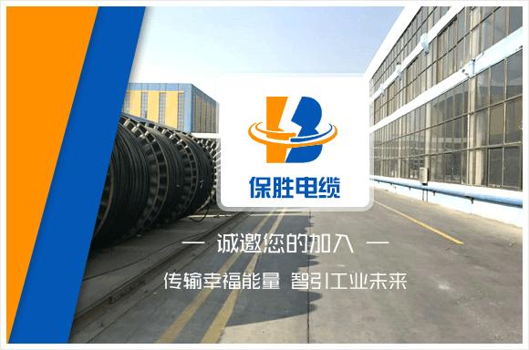 保胜(山东)竞博体育app下载安卓科技jbo竞博体育app